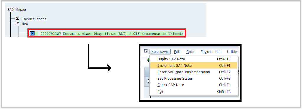 Implement SAP Note