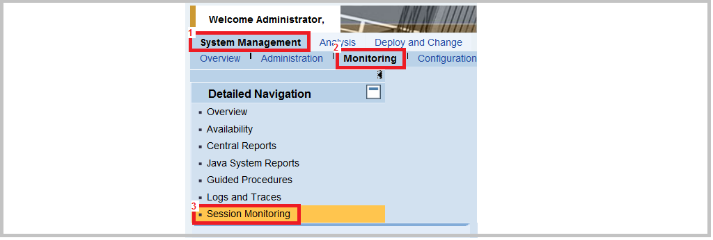User Session Monitoring SAP Java