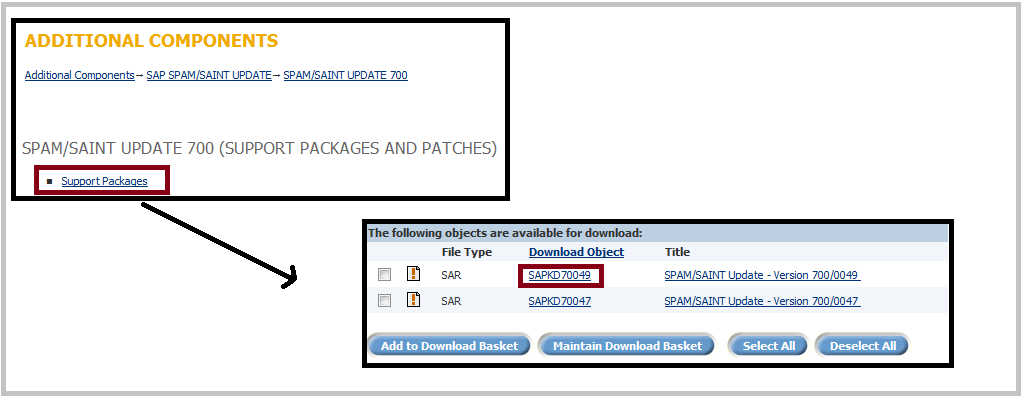 SAP Download SPAM SAINT Update 2