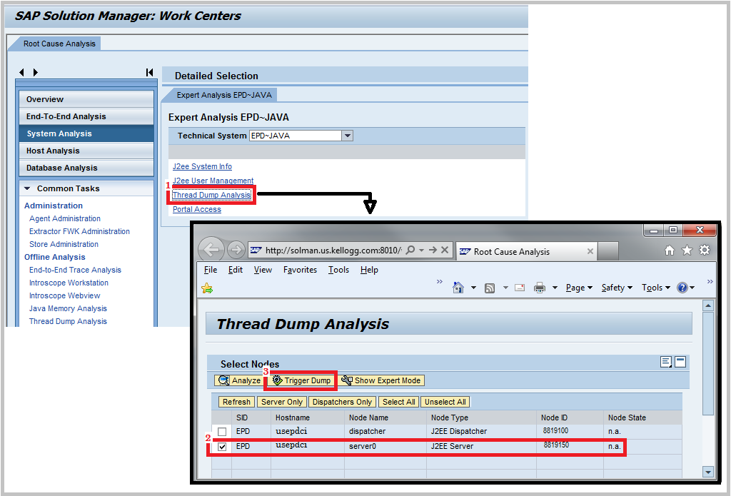 SAP Solman trigger thread dump