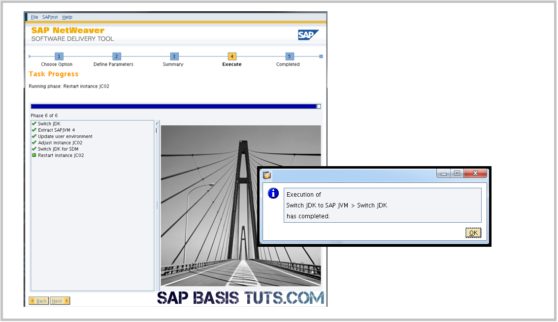 SAP JVM Switch tool confirmation