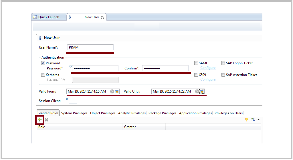 SAP HANA user detail