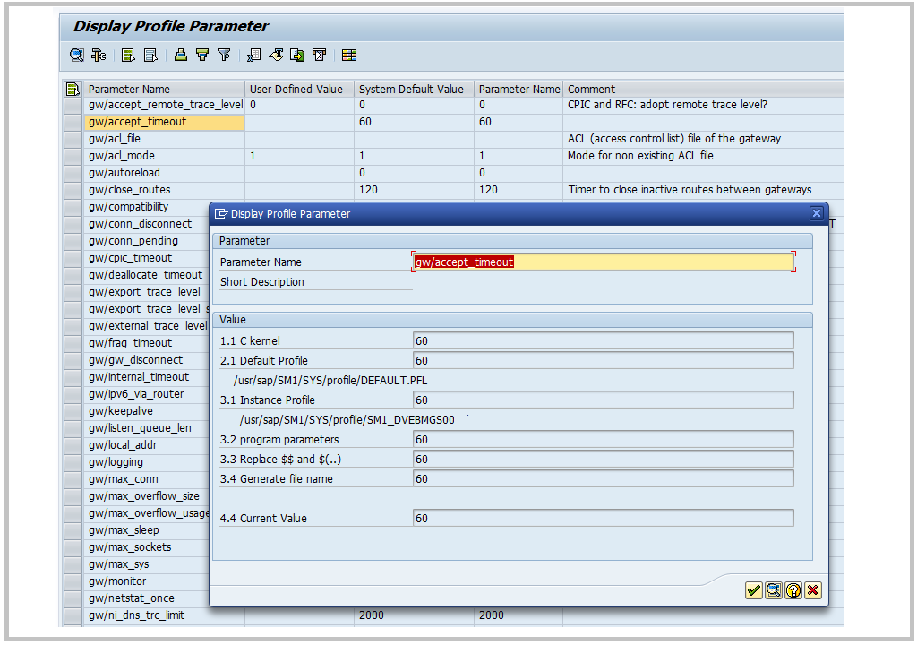 RSPARAM report output , SAP Parameters